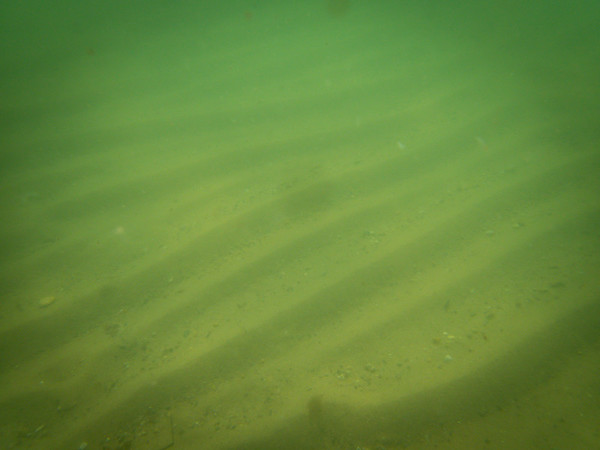 underwater photography, bend in the road,