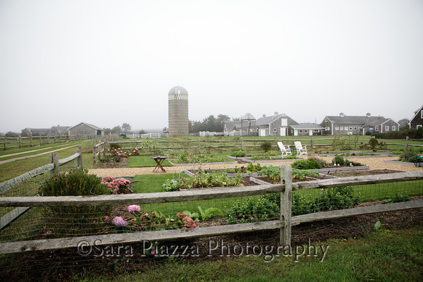 Herring Creek Farm