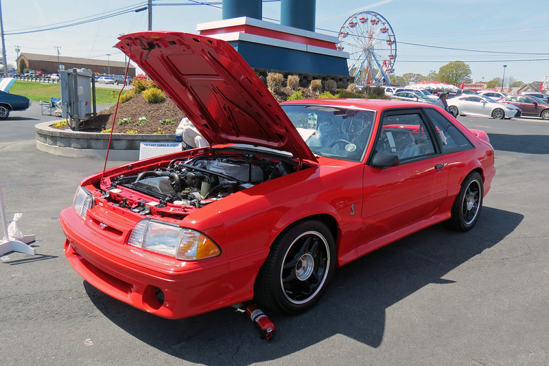 1993 Ford Mustang SVT Cobra R.