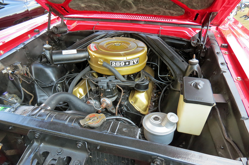 Power comes from Ford's famous 289 CID V8 that makes 200 hp in 2-bbl form, (4-bbl cars have 225 hp).