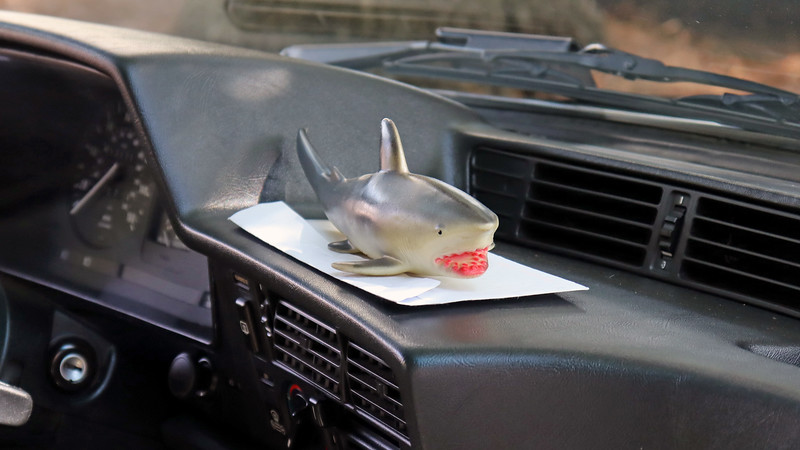 The shark on the dash is a reference to the E24 platform's nickname.