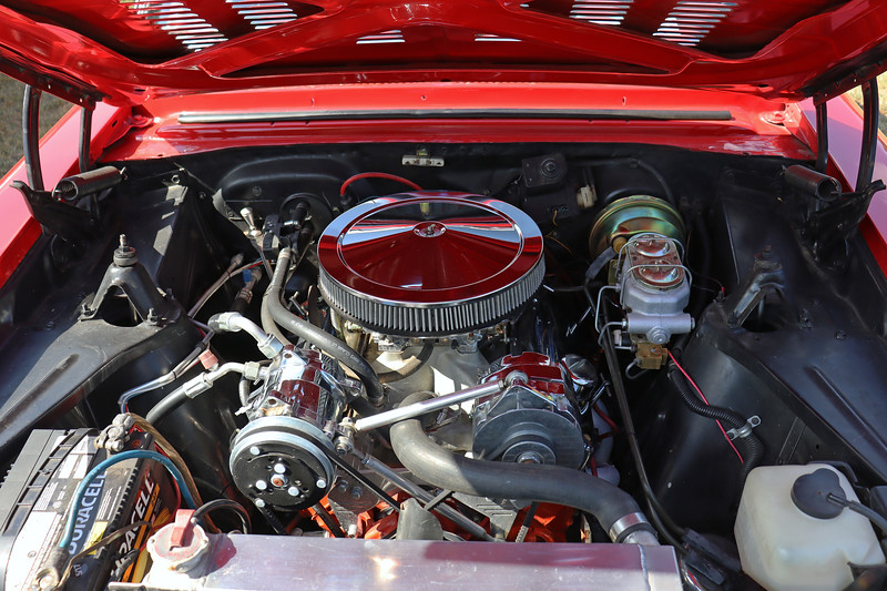 Like the Ford Fairlane Victoria next to it, the original engine has been replaced, in this case with a modified small-block V8.