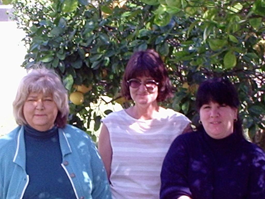 Children of Donald and Delores Wassum (Karen, Daralee, Lynn Robin) 2004
