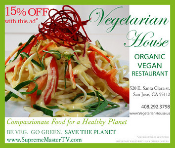 v09_i20_vegetarian_house_international_1_6sq