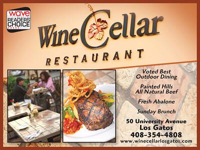 v08_i24_wine_cellar_1_6sq
