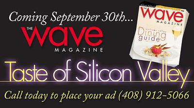 v09_i14_wave_magazine_TASTE_SILICON_VALLEY_1_2h