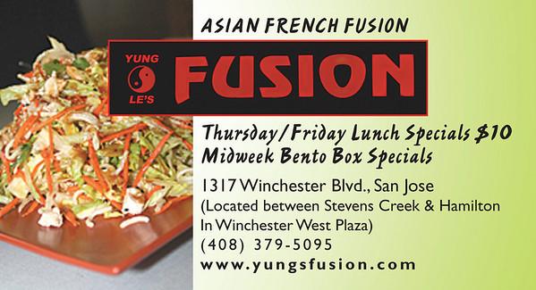 v08_i08_yung_les_fusion_1_8h