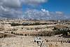 Israel_757