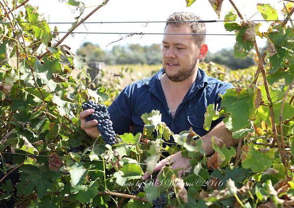 Mick Lloyd Eden Road winery Murrumbateman