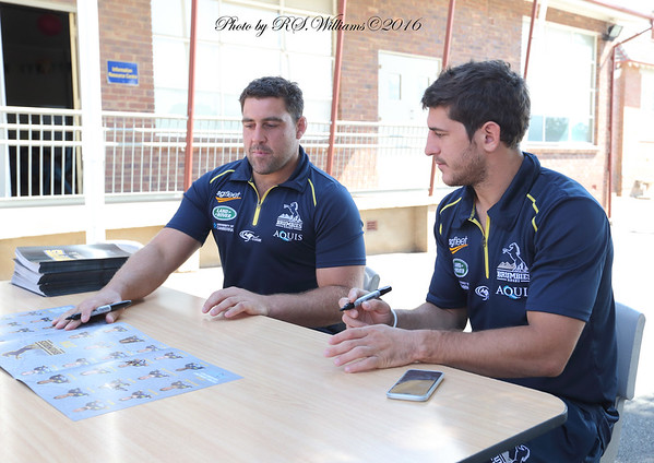 Canberra Brumbies