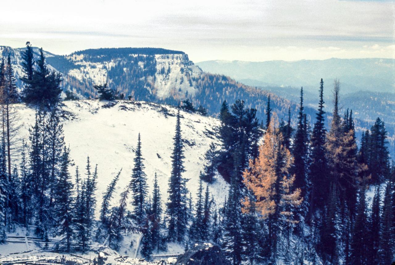 IMAGE: https://photos.smugmug.com/The-West-mostly-1971-75/High-country-hiking/i-BGFpmFJ/0/2532e3b0/X2/19%20WA-X2.jpg