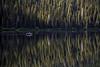 Cameron Lake Boater - Morning