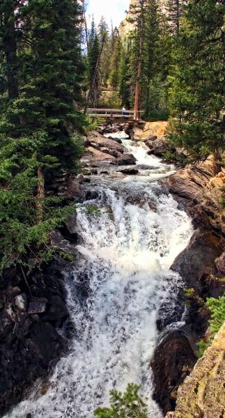 Cascade Creek Falls - One of Many