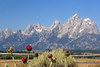 Grand Tetons from Jackson Hole Upper Valley