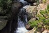Cascade above Alberta Falls