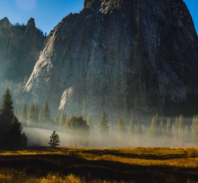 Smokey Meadow