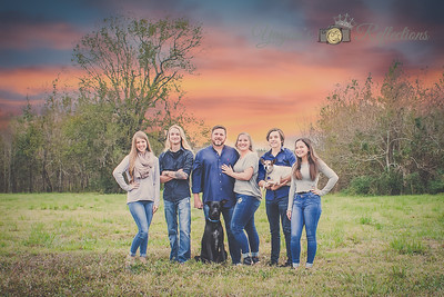The Williams Family 2017