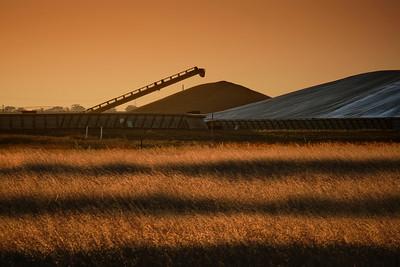 Wheat storage at Dooen.