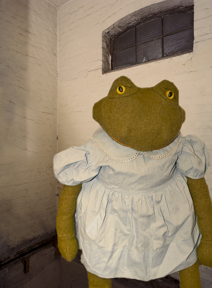 Toad in dress