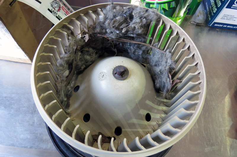 "The customer described this noise and vibration concern as one that worsened as the blower fan speed was increased.  I removed the blower fan motor assembly to find a few ""extra parts"" contained therein."
