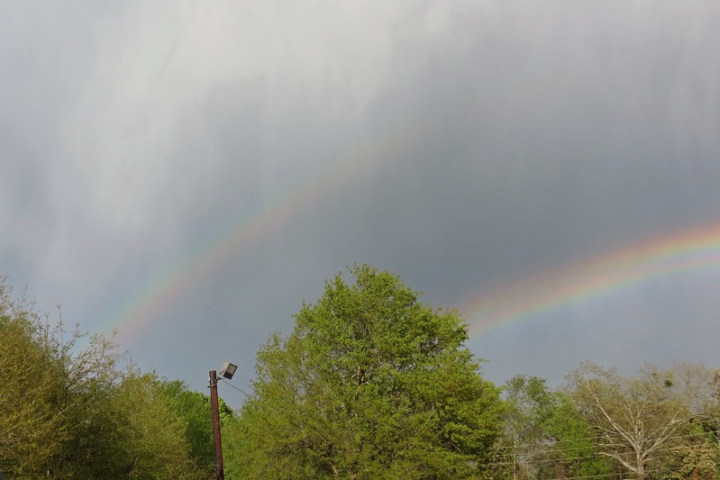 A double rainbow !