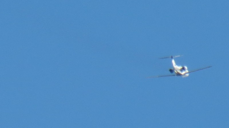 Then I tried pushing my luck with more zoom which didn't work out too well.  But you get the idea.