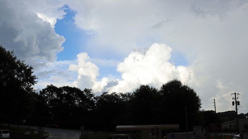 Pleasant, although hot conditions were forecast for today with the possibility of a thunderstorm scattered throughout.