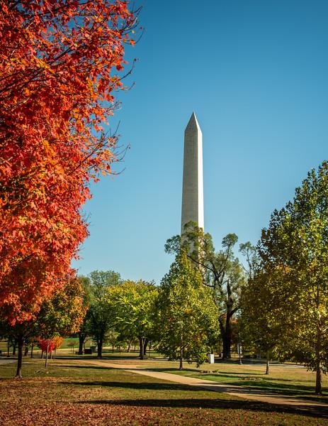 Fall Colors at the Washington Monument, Washington, D. C.
