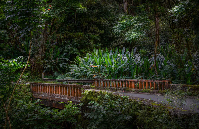 One of the Sixty Bridges Along the Hana Road, Maui, Hawaii