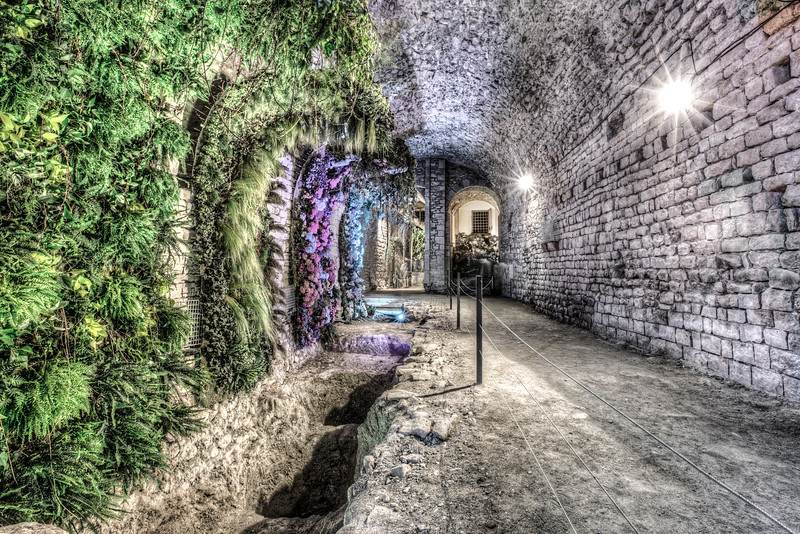A Garden in the Basement (Girona Cathedral, Catalonia)