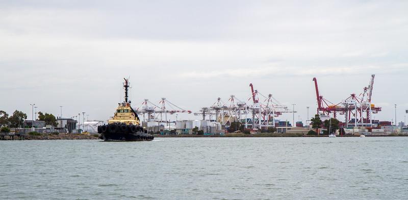 Tug Boat Port of Melbourne