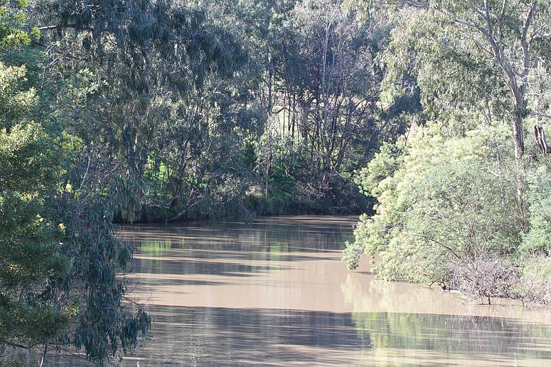 Yarra River Studley Park