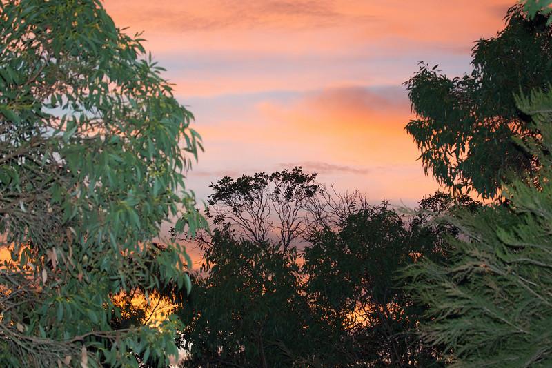View at Cornerstone Cottage Yanakie
