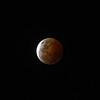 Blood Moon October 8 2014