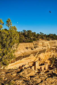 Cliff Palace 3