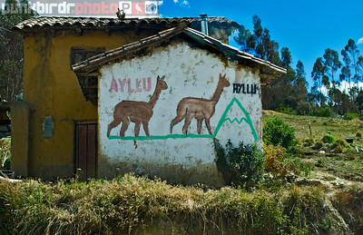 Andes Houses