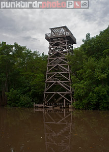 Caroni Swamp Tower