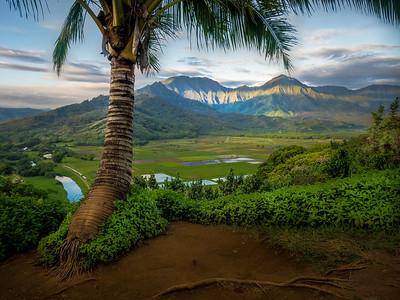 Peaceful Kauai Dawn