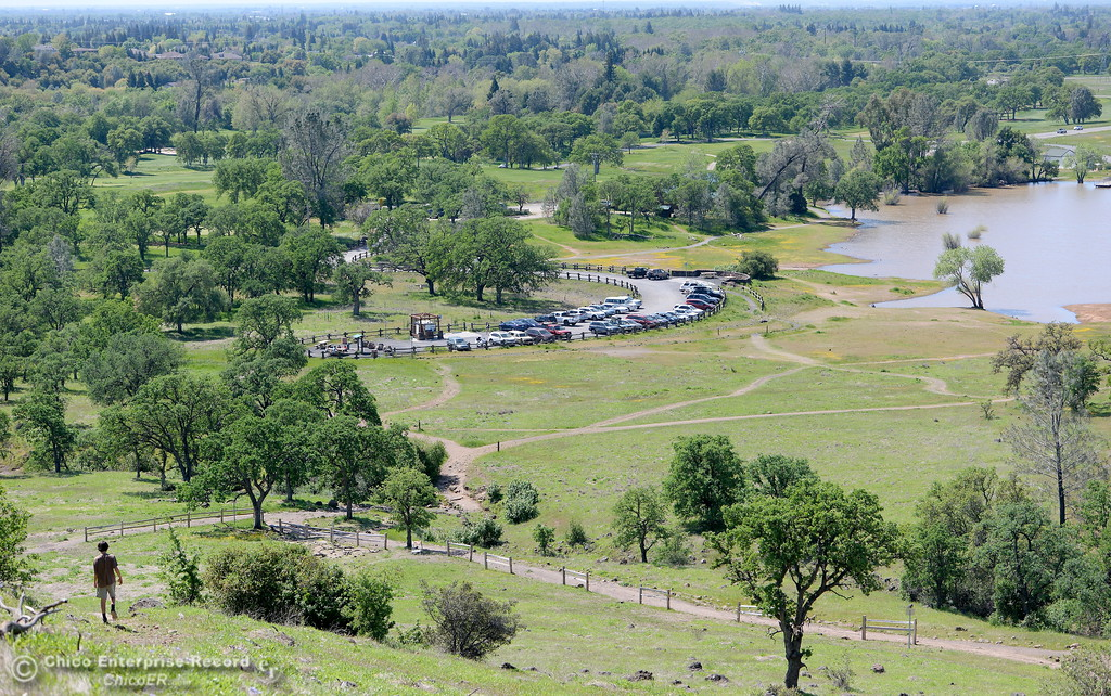 . A hiker is seen above the Horseshoe Lake parking lot as wildflowers a green grass continue to encourage outdoor activities in Upper Bidwell Park in Chico, Calif. Mon. April 3, 2017.  (Bill Husa -- Enterprise-Record)