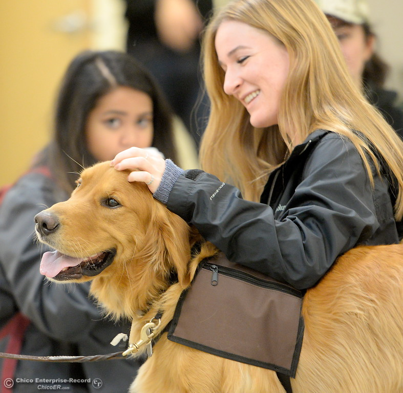 . Toby, a golden retriever owned by Ed Seagle gets some pets from Hannah Gates and other CSUC students as they take a break from their stresses to enjoy the company of dogs in the Zen Den located at BMU 301 on CSUC campus Thurs. Oct. 19, 2017.  (Bill Husa -- Enterprise-Record)