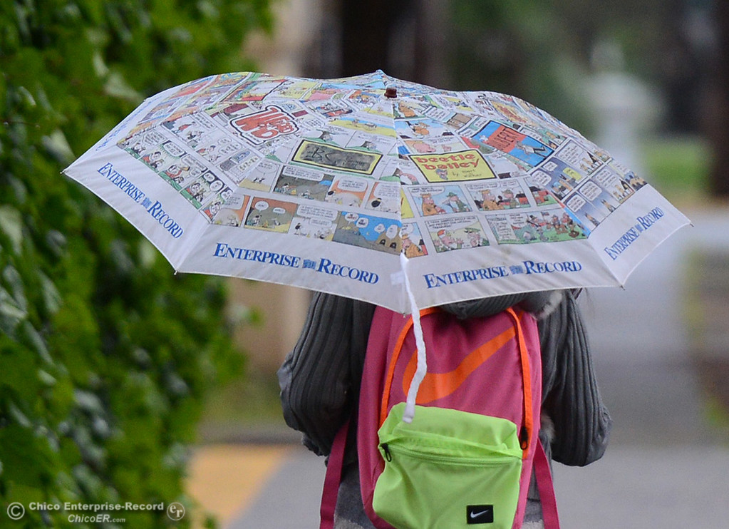 . A woman stays dry Wednesday, March 22, 2017, under an Enterprise-Record umbrella in Chico, California. (Dan Reidel -- Enterprise-Record)