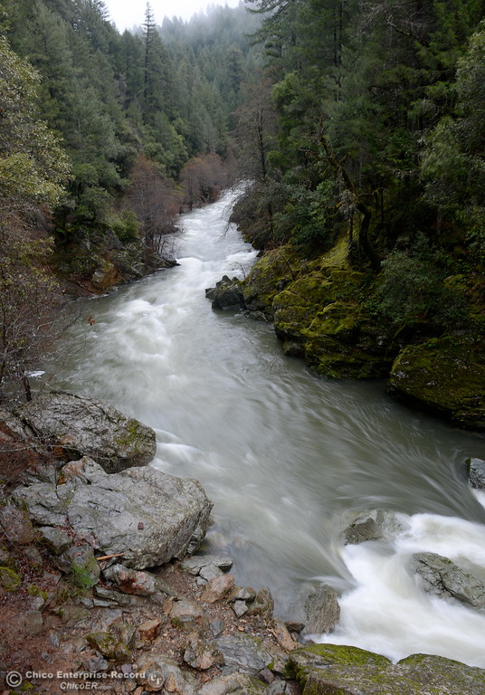 . Fast moving water flows down Butte Creek as seen from the Forks of Butte Creek bridge after a night of heavy rain above Magalia, Calif. Wed. Jan. 4, 2017. (Bill Husa -- Enterprise-Record)
