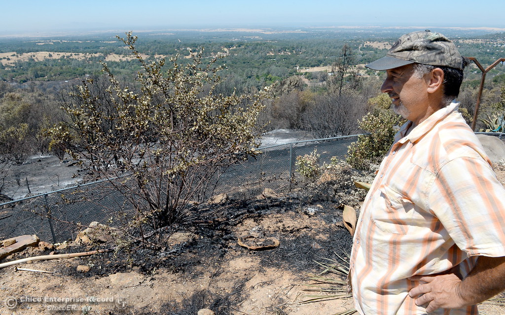 . Looking toward the charred trees and brush just off of his back porch, Don Prestella can\'t thank firefighters enough as he expresses his gratitude for saving his Viewcrest Drive home from the Wall Fire near Oroville, Calif. Mon. July 10, 2017. (Bill Husa -- Enterprise-Record)