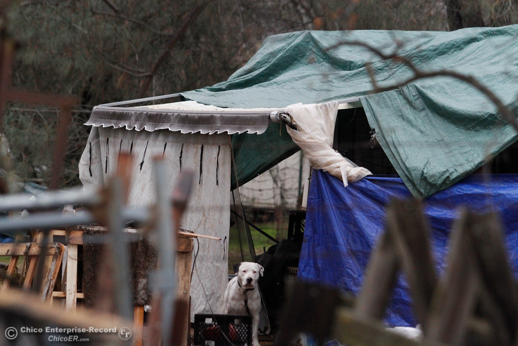 . About 40 homeless people are staying in tents and sharing a garden and portable toilet on a piece of land off Notre Dame Boulevard in Chico January 4, 2017. The land\'s owners have issued a 30-day notice to terminate the lease held there by Joel Castle, and the city has cited him twice. The land is zoned for industrial use, so residential use poses a health and safety hazard. Castle welcomed homeless people to the property about two months ago to offer them shelter through the winter. (Emily Bertolino -- Enterprise-Record)