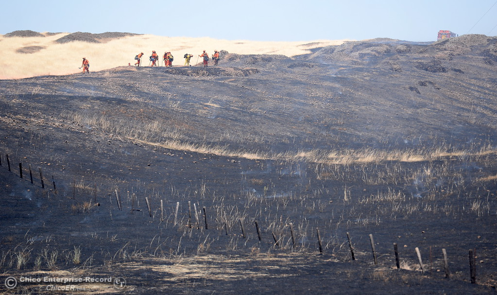 . A crew is seen along a ridge top as firefighters work on a 91 acre fire seen along Nelson Road in Oroville, Calif. Tues. June 6, 2017. (Bill Husa -- Enterprise-Record)