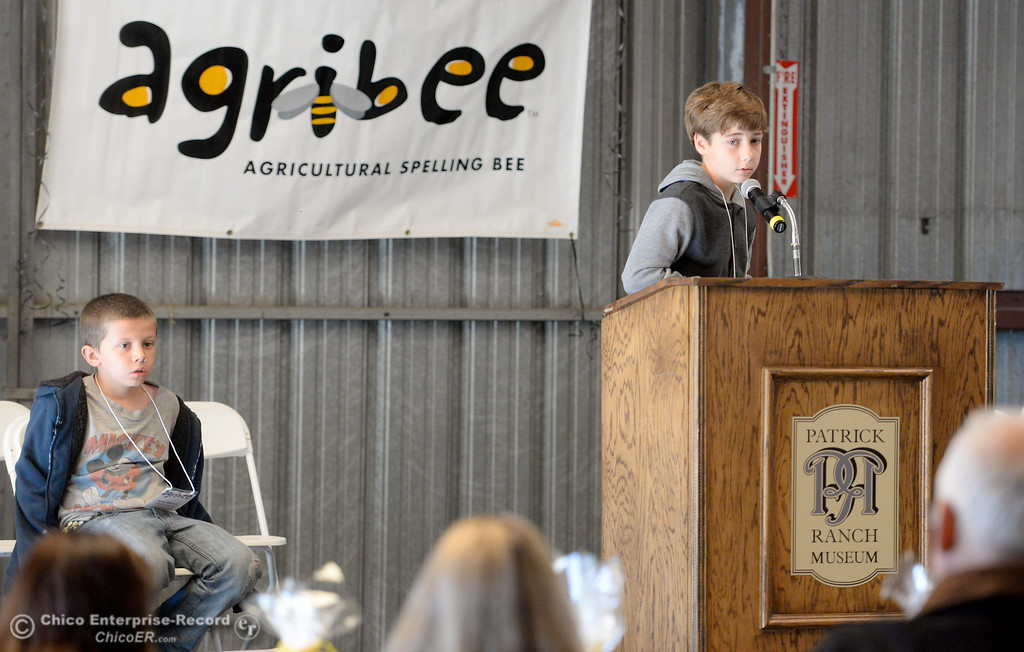 . The top two spellers, Ayvin Hamrell of Oakdale Heights Elementary School in Oroville at left and Mark Kincheloe of Lincoln Street School in Red Bluff battle during the 13th annual Agribee Spelling Bee at the Patrick Ranch in Chico, Calif. Friday Nov. 17, 2017. Kincheloe would eventually win the spelling dual while Hamrell placed second. (Bill Husa -- Enterprise-Record)