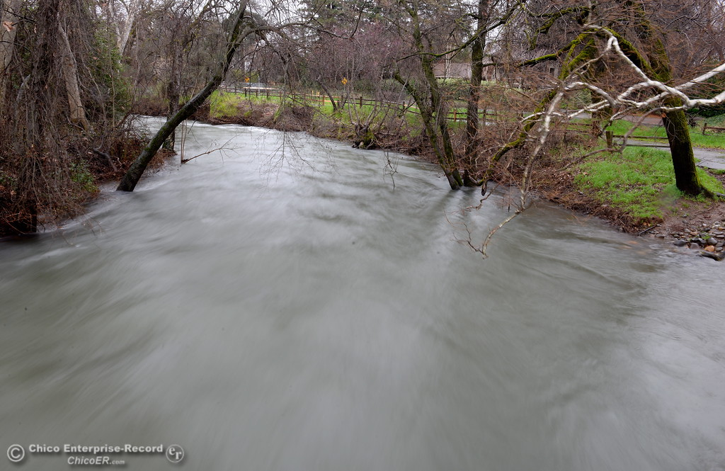 . Big Chico Creek flows high and wide near the Manzanita Ave. footbridge in Bidwell Park Monday Feb. 20, 2017. (Bill Husa -- Enterprise-Record)