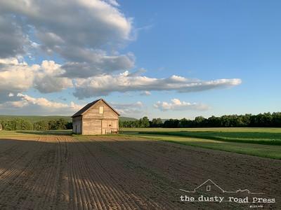 Summer Day Barn
