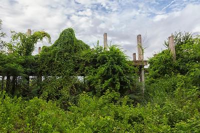 abandoned apartment complex, Samut Prakan, Thailand