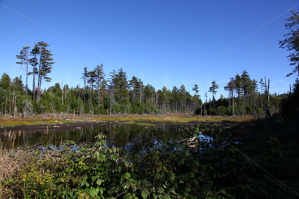 long lake region